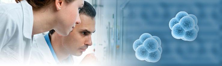 fungos dermatologia