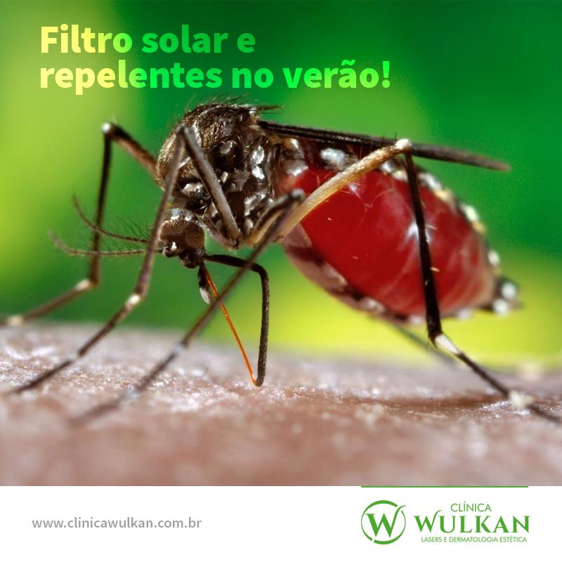 Filtro solar e repelentes no verão