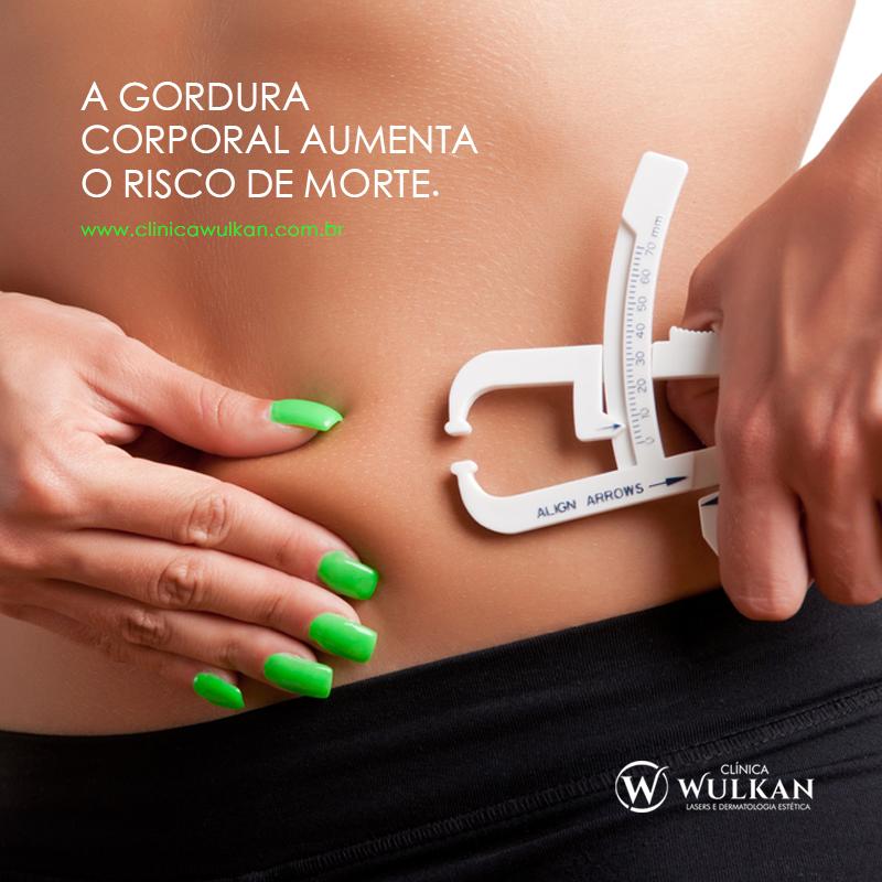 A gordura corporal aumenta o risco...